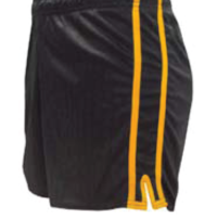 Lee Sports Black/Gold GAA Shorts