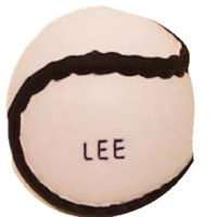 Lee Sports All Weather Sliotar Senior
